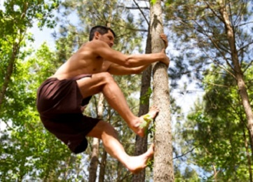 NATURAL MOVEMENT | REAL WORLD FITNESS